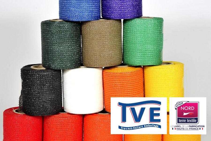 TVE – NTT 2019